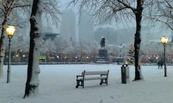 winterse verstilling